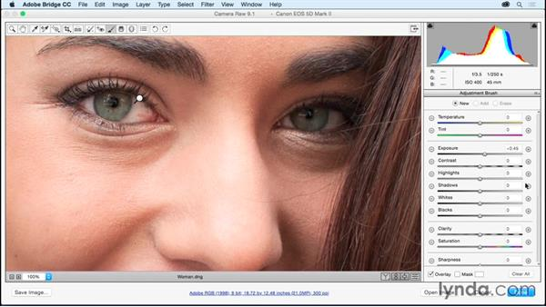 Brightening eyes and teeth with the Adjustment Brush: Adobe Camera Raw Essential Training