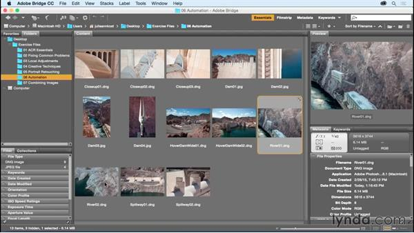 Copying and pasting adjustments across files: Adobe Camera Raw Essential Training