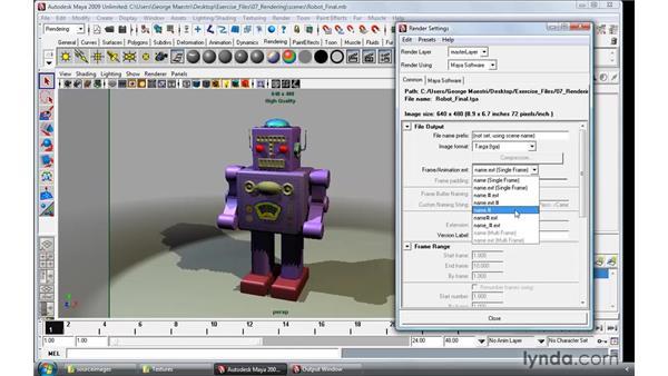 Understanding render settings: Maya 2009 Essential Training