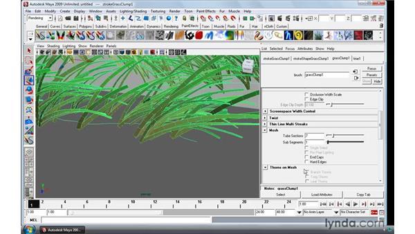 Creating brushes: Maya 2009 Essential Training