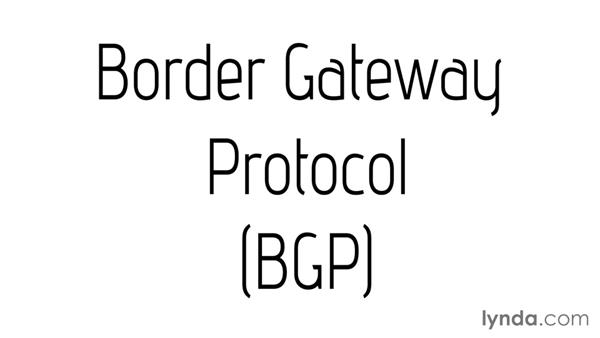 Border Gateway Protocol: CompTIA Network+ Exam Prep (N10-006) Part 3: The World of TCP/IP
