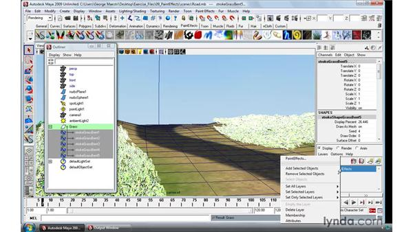 Paint Effects in practice: Maya 2009 Essential Training