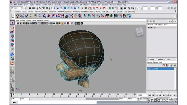 Selecting portions of edge and face loops: Maya 2009 New Features
