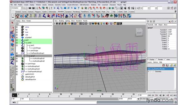 Using Muscle Creator to create and edit muscles: Maya 2009 New Features