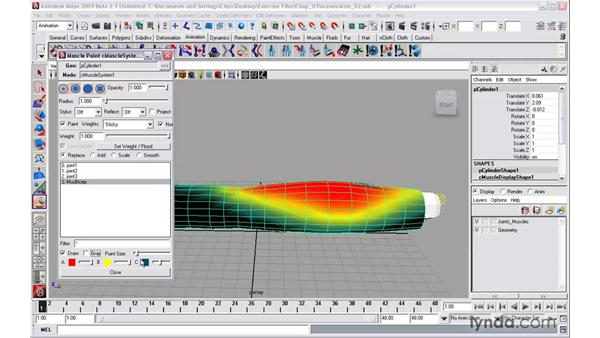 Painting muscle weights: Maya 2009 New Features