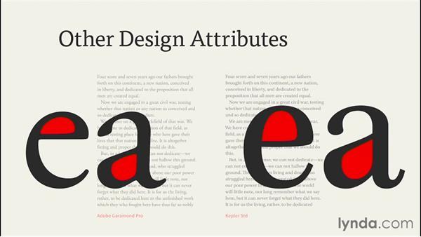 Other design attributes: InDesign CC EPUB Typography