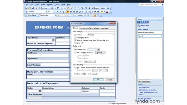 Setting view properties: InfoPath 2007 Essential Training