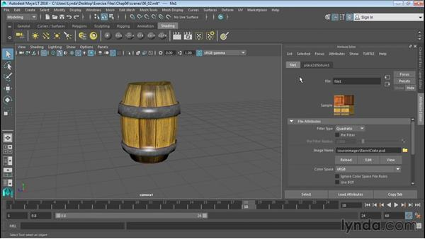 Adding textures: Up and Running with Maya LT