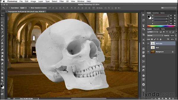 Duplicating the skull and applying a Levels adjustment: Building Transparency in Photoshop