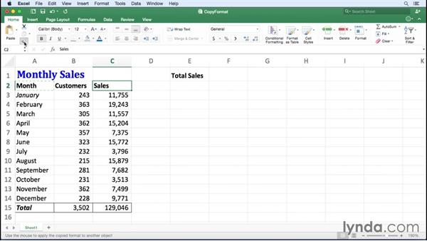 Copying cell formats: Office 365 for Mac: Excel Essential Training
