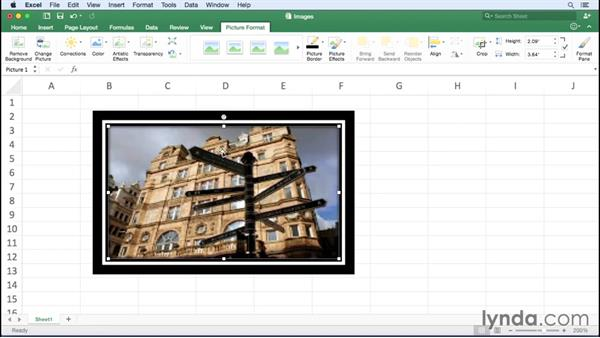 Adding and adjusting images: Office 365 for Mac: Excel Essential Training