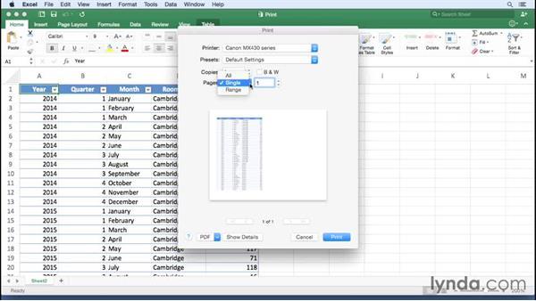 Printing a worksheet or workbook: Office 365 for Mac: Excel Essential Training