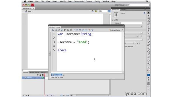 Retrieving variable values: ActionScript 3.0 in Flash CS4 Professional for Designers