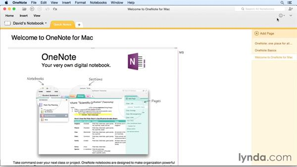 Touring the user interface: OneNote for Mac 2011 Essential Training
