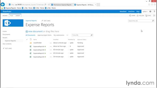 Document/item access: SharePoint 2013 Security for Users