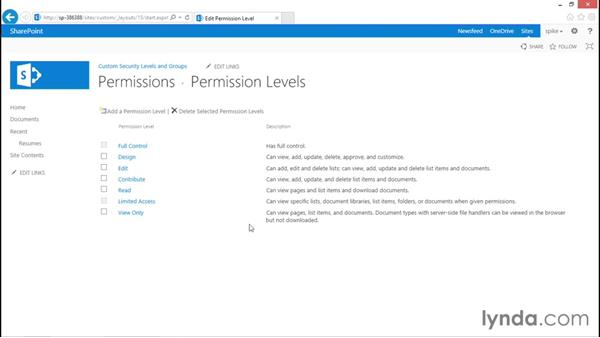 Custom security levels: SharePoint 2013 Security for Users