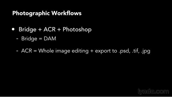 Choosing workflow tools: Bridge, Camera Raw, Photoshop, and Lightroom: Color Correction in Adobe Camera Raw