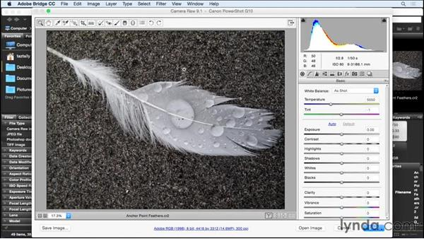 Opening images in Camera Raw via Bridge and Photoshop: Color Correction in Adobe Camera Raw