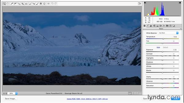 Evaluating overall tone and color: Color Correction in Adobe Camera Raw