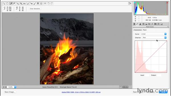 Working with difficult images: Color Correction in Adobe Camera Raw