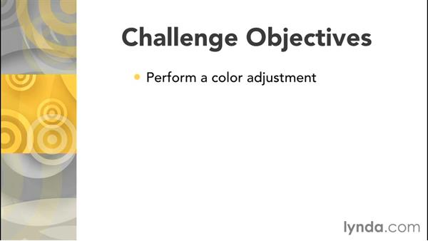 Challenge: Identifying and correcting a color cast: Color Correction in Adobe Camera Raw
