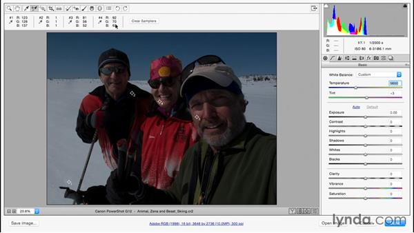 Solution: Color Correction in Adobe Camera Raw