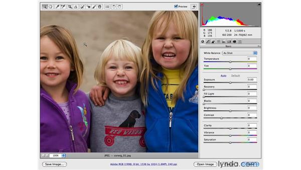 Navigating in Camera Raw: Photoshop CS4 for Photographers: Camera Raw