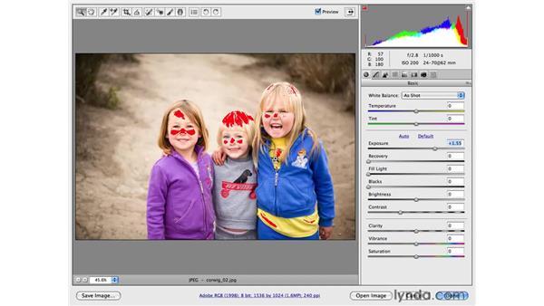 Analyzing images with the histogram: Photoshop CS4 for Photographers: Camera Raw