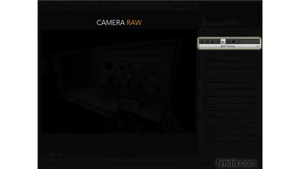 Introducing the Image Adjustment tabs: Photoshop CS4 for Photographers: Camera Raw
