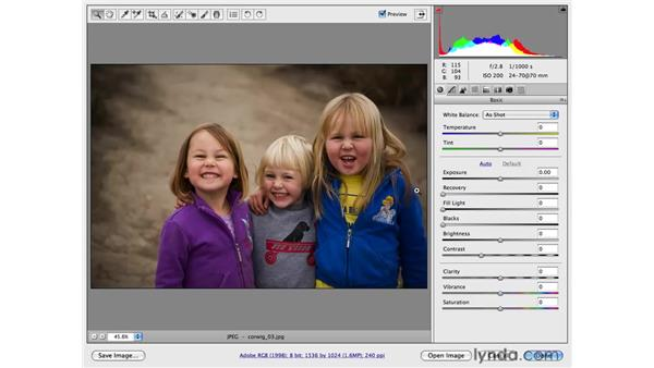 Navigating the Camera Raw panels with keyboard shortcuts: Photoshop CS4 for Photographers: Camera Raw