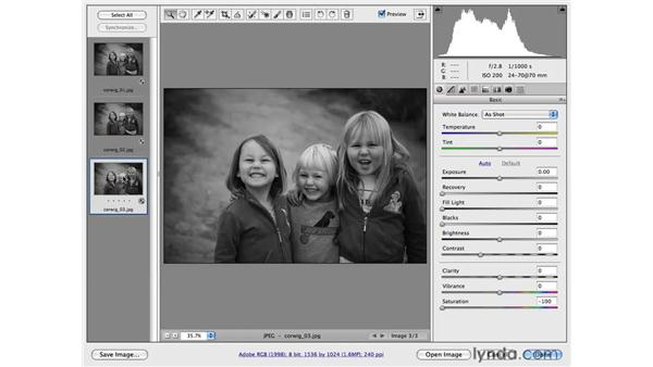 Working with multiple files in Camera Raw: Photoshop CS4 for Photographers: Camera Raw