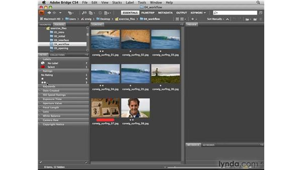 Using the Filter panel: Photoshop CS4 for Photographers: Camera Raw