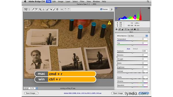 Correcting color with the White Balance tool: Photoshop CS4 for Photographers: Camera Raw