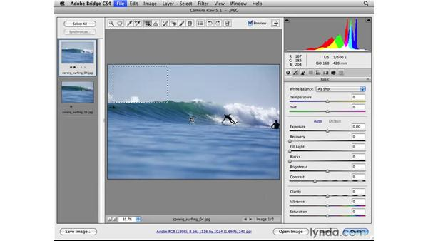 Cropping and composing: Photoshop CS4 for Photographers: Camera Raw
