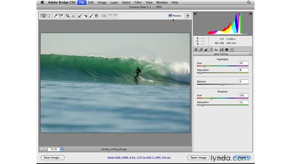 Enhancing color and tone: Photoshop CS4 for Photographers: Camera Raw
