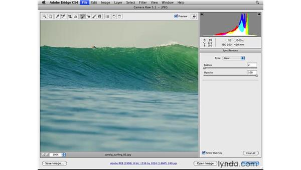 Removing distractions: Photoshop CS4 for Photographers: Camera Raw
