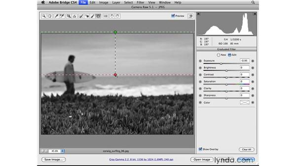 Converting to black-and-white: Photoshop CS4 for Photographers: Camera Raw