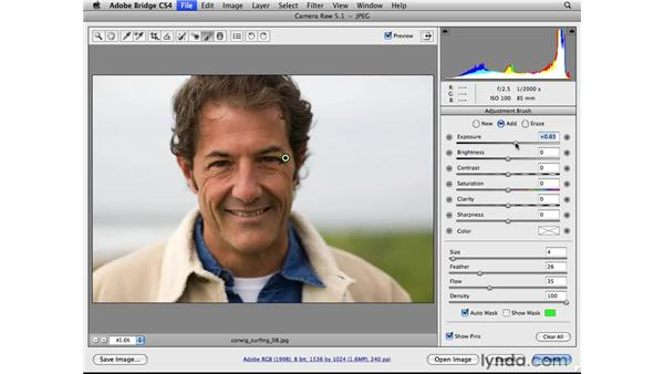 Making a localized correction: Photoshop CS4 for Photographers: Camera Raw