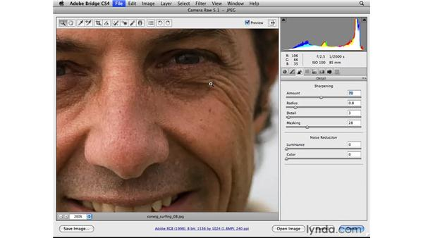 Improving details: Photoshop CS4 for Photographers: Camera Raw