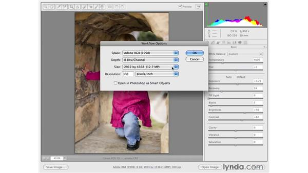 Resizing in Camera Raw with workflow options: Photoshop CS4 for Photographers: Camera Raw