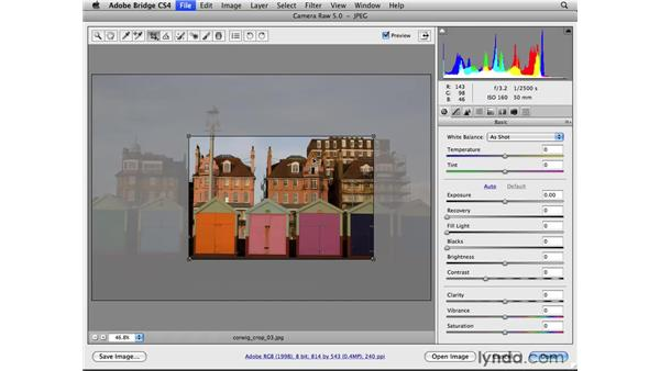 Cropping with an aspect ratio: Photoshop CS4 for Photographers: Camera Raw