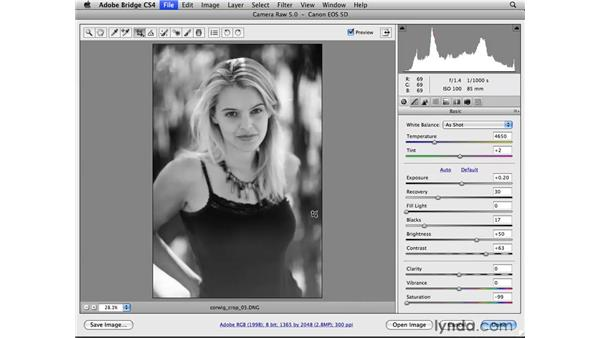 Creative cropping: Photoshop CS4 for Photographers: Camera Raw