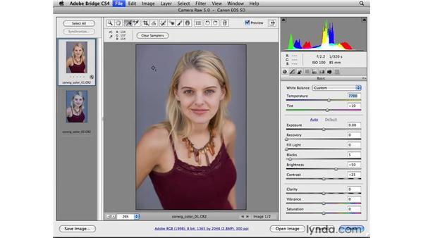 Improving color balance: Photoshop CS4 for Photographers: Camera Raw