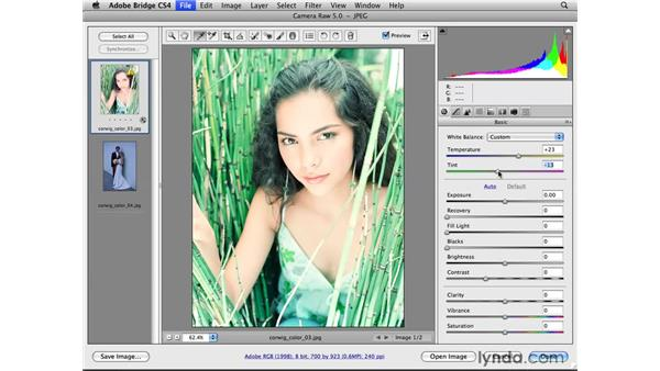 Using the White Balance tool and controls: Photoshop CS4 for Photographers: Camera Raw