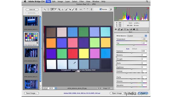 Correcting color with white balance cards: Photoshop CS4 for Photographers: Camera Raw