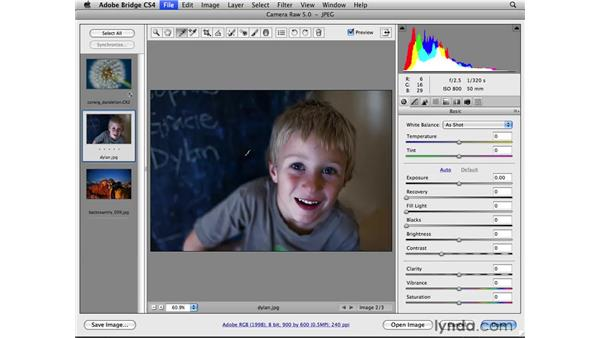 White balance vision and creativity: Photoshop CS4 for Photographers: Camera Raw