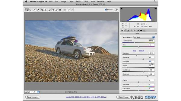 Recovering highlights: Photoshop CS4 for Photographers: Camera Raw