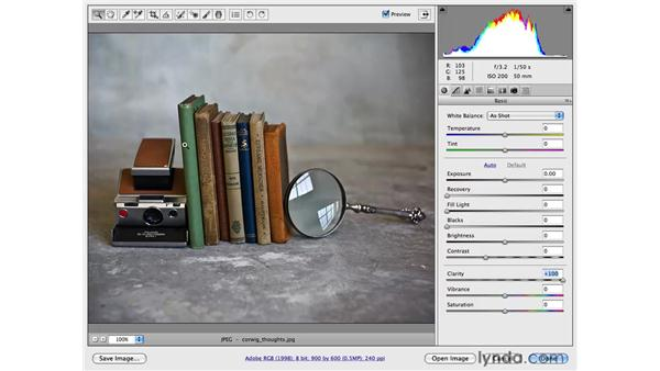 Increasing clarity: Photoshop CS4 for Photographers: Camera Raw