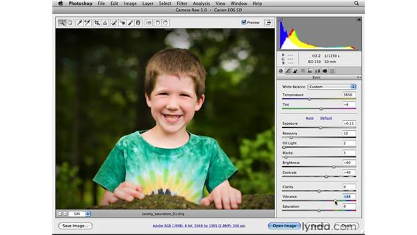 Improving color with Vibrance: Photoshop CS4 for Photographers: Camera Raw