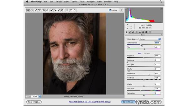 Muting colors with Vibrance: Photoshop CS4 for Photographers: Camera Raw